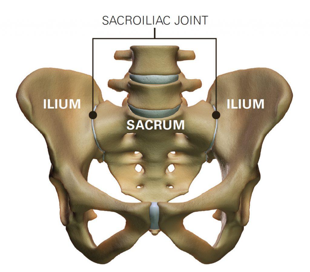 Sacroiliac Joint
